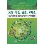 莴苣、生菜、蕹菜、木耳菜病虫害鉴别与防治技术图解