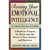 按需印刷 Raising Your Emotional Intelligence: A Practical Guide