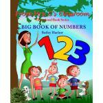 【预订】Big Book of Numbers
