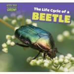 【预订】The Life Cycle of a Beetle