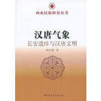 汉唐气象(西北民族研究丛书)