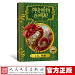神奇动物在哪里 中文插图版 原创电影剧本 霍格沃茨图书馆系列 J.K.罗琳 哈利波特系列儿童文学青少年奇幻魔幻经典故事
