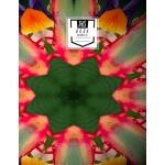 预订 Sheet Music Notebook: Fruitas - Blank Sheet Music, Large