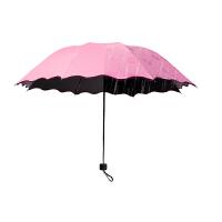 泰蜜熊遇水开花黑胶晴雨两用伞夏季防紫外线太阳伞防晒伞