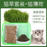 猫草水培盆栽种植盆种子孑吐毛球化毛盒草无土猫咪器皿小麦猫薄荷