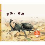 中国原创图画书:老黑,老黑