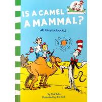 【88元任�x5】Is a Camel a Mammal? ��是哺乳�游�� 戴帽子的�科普�L本 哺乳�游锎笥^ 英文原版�L