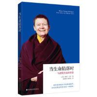 【二手旧书8成新】当生命陷落时:与逆境共处的智慧 (美)佩玛.丘卓 9787807095125