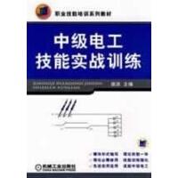 职业技能培训系列教材 中级电工技能实战训练