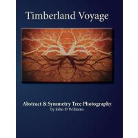 预订 Timberland Voyage: Tree Abstract & Symmetry Art Photogra