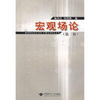 【二手旧书8成新】宏观场论(第二版 施国良,张国雄 9787562522805