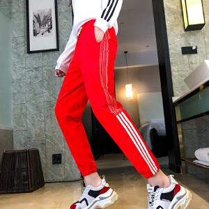 白领公社 休闲裤 女士韩版新款条纹字母束腿哈伦裤秋季女式时尚休闲舒适百搭运动款式裤子