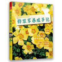 酢浆草养成手记(总结多年的种植技巧,大量的花球美图)