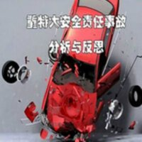 正版包票 重特大安全责任事故分析与反思 2DVD 视频光盘碟片