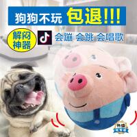 抖音宠物玩具跳跳球泰迪狗狗超耐咬磨牙发声自己玩电动球解闷神器