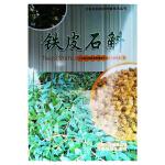云南名特药材种植技术丛书――铁皮石斛