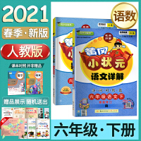 新版2020春黄冈小状元详解语文数学六年级下册2本套装(人教版)RJ同步教材全解六年级语数