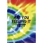 预订 Are You Feeling It Yet: Notebook Journal Composition Bla