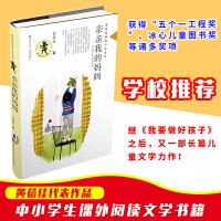 黄蓓佳倾情小说系列亲亲我的妈妈 黄蓓佳长篇儿童小说 8-9-10-11-12-13-14-15岁三四五六年级儿童文学读