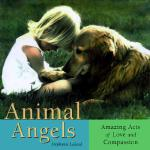预订 Animal Angels: Amazing Acts of Love Compassion[ISBN:9781