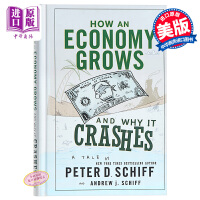 【中商原版】小岛经济学 : 鱼、美元和经济的故事 How an Economy Grows and Why It Crashes 经管类书书籍 管理类 经济领域的各种细节和现象进行整体性分