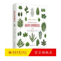 树叶博物馆(赠品盒装版) 北京大学出版社