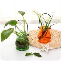 加厚彩色透明悬挂式玻璃花瓶创意室内植物小吊瓶花卉容器