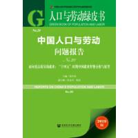人口与劳动绿皮书 中国人口与劳动问题报告No.20 张车伟 主编 社科文献