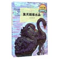 黑天鹅紫水晶/沈石溪**动物小说