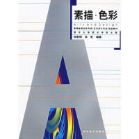 【二手旧书8成新】素描 色彩--高教育自学考试 张歌明,张虹 9787539411705