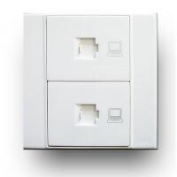 天朗 双电脑插座天力士Q系列