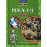 细胞在工作(中文翻译版)――国家地理阅读与写作训练丛书