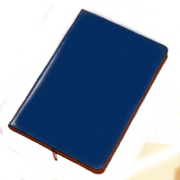 习丰 皮面笔记本(25K100页)颜色随机 记事本 皮面本 通用笔记本 18225 当当自营