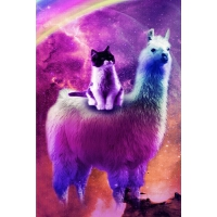 预订 Kitty Cat Riding On Rainbow Llama In Space Daily Weekly