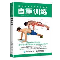 肉训练彩色解剖图谱 自重训练 无器械健身书籍 自重训练全书 男人健身书 健身计划 增强肌肉力量 体育 运动 减肥塑身健