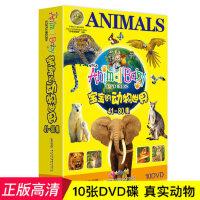 宝宝的动物世界10DVD幼儿童百科普教育早教动画高清光盘碟片正版