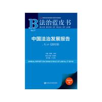 法治蓝皮书 中国法治发展报告No.17(2019)主编 / 陈�d 田禾