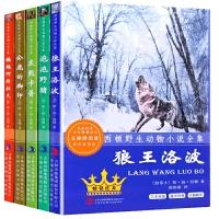 西顿野生动物故事集小说全集 5 册 儿童读物 青少年儿童文学名著小学生课外阅读假期读物狼王洛波可搭配银狐托米等西顿动物