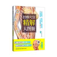 经络穴位精解大图册――分皮肤层、肌肉层、骨骼层精细解读穴位