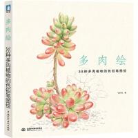 多肉绘 38种多肉植物的色铅笔图绘