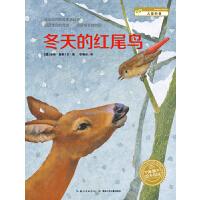 安娜?莫勒科普绘本:冬天的红尾鸟(平)