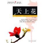 中国新锐作家方阵・当代青少年小说读本--天上花