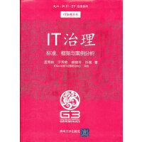 IT治理:标准、框架与案例分析(文化 组织 IT治理智库―IT治理丛书)