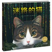 绘本花园:迷路的猫(精)