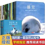 我的套自然认知书全套20册儿童绘本300余幅珍贵实景图0-3-6-8岁宝宝启蒙认知书幼儿早教书动物植物大自然互动少儿视