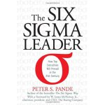 The Six Sigma Leader How Top Executives Will Prevail in the