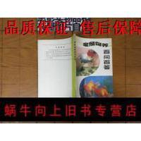 【二手旧书9成新】金鱼饲养百问百答
