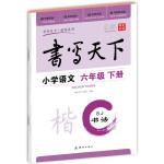 小学语文六年级下册楷书字帖SJ苏教版 书写天下米骏硬笔书法