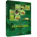 北京林业昆虫图谱(II)