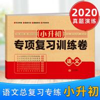 小升初专项复习训练卷语文试卷通用版2020版